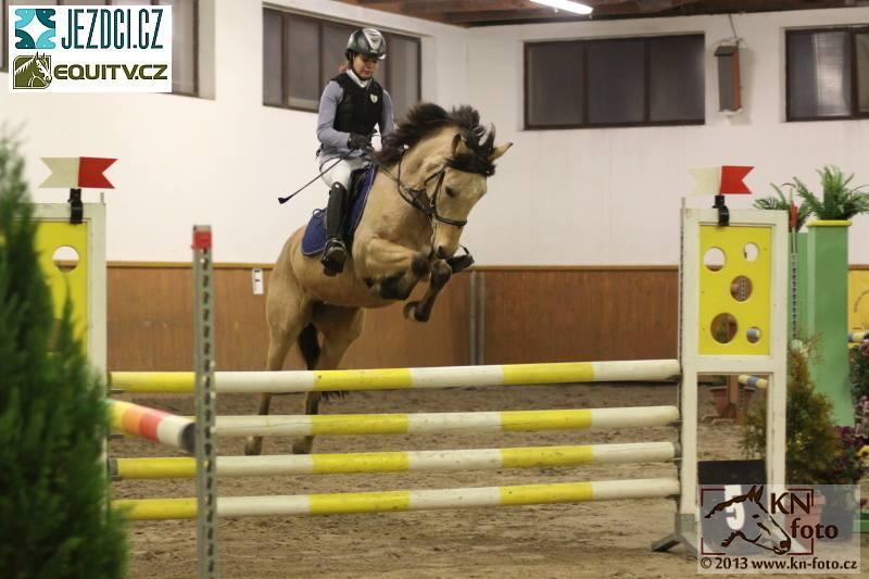 уэльский пони. фото